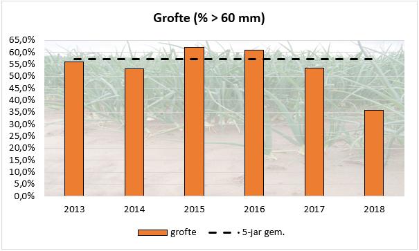 Proefrooiing uien 2018 grofte lager dan gemiddeld