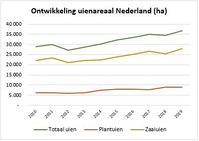 Het areaal uien breidt in 2019 uit met 6,8%