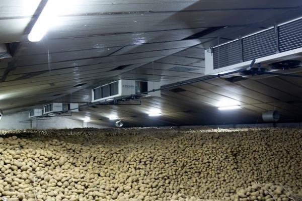 Aardappelvoorraad november 2018 fors lager